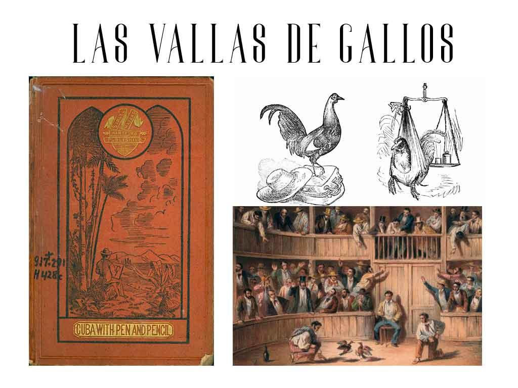 vallas de gallos