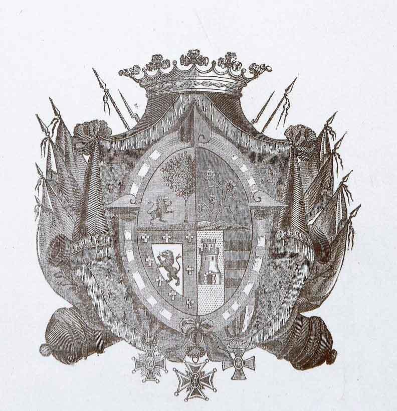 escudo de miguel tacón