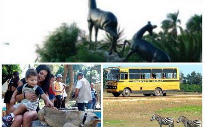 Reabren sus puertas zoológicos de La Habana