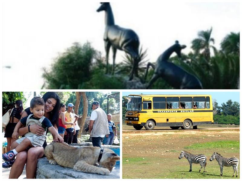 Zoologico de Cuba Juegos