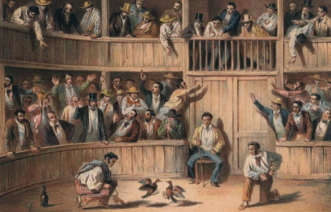 valla de gallos 1841